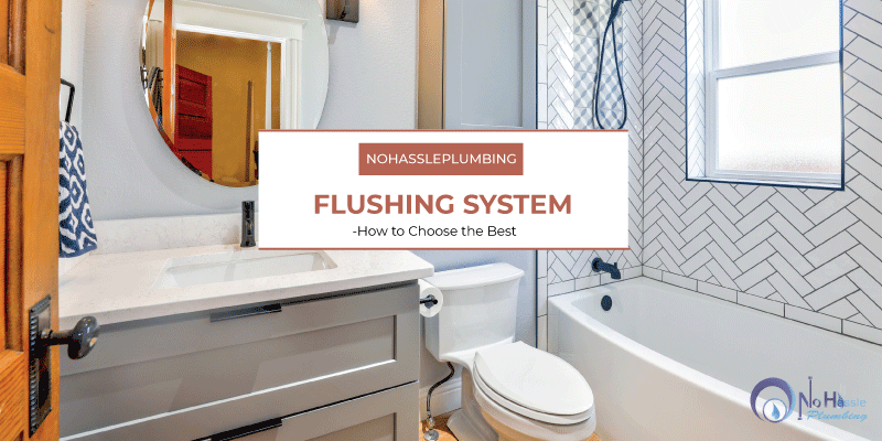 flushing-system