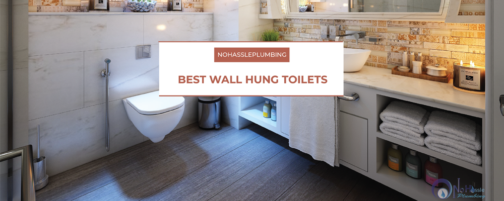 wall hung toilets feature